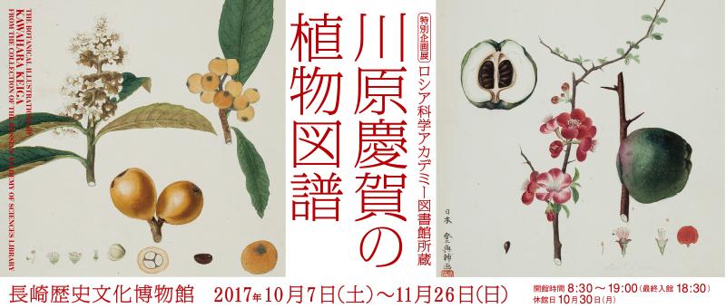 川原慶賀の画像 p1_9